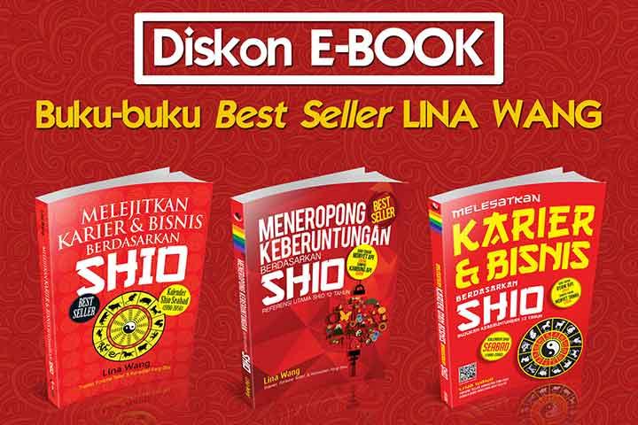 diskon ebook visimedia lina wang
